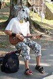 与母牛面具的街道音乐 库存照片