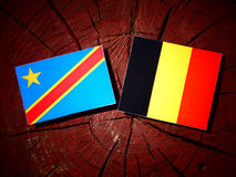 与比利时旗子的刚果民主共和国旗子在tre 库存照片