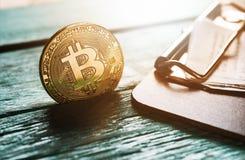 与比尔Holderclose的金黄bitcoin硬币 免版税库存图片