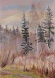 与毛皮树和桦树的秋天风景 库存图片