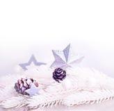 与毛皮树枝的银色xmas装饰 免版税库存照片