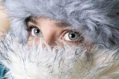 与毛茸的辅助部件的冬天纵向 库存图片