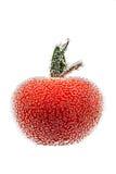 与气泡的西红柿 库存照片
