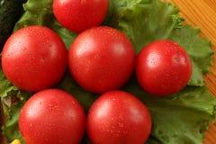 与水下落的新鲜的红色成熟蕃茄在莴苣叶子说谎 库存照片
