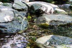 与水和大岩石的小小河 免版税库存图片