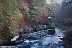 与水和小屋的田园诗苏格兰人Forrest风景 免版税库存照片