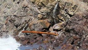 与水和波浪的注册岩石 股票录像
