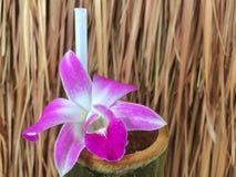 与水圆筒的紫色兰花 免版税库存照片
