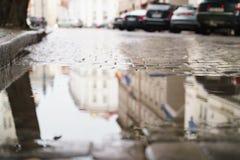 与水坑的老湿路面在秋天天 免版税库存图片