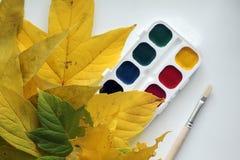 与水彩和油漆刷的秋天 库存图片