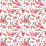 与水彩桃红色花的无缝的样式 免版税库存图片