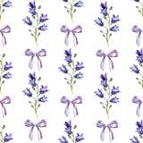 与水彩浅兰的丝带会开蓝色钟形花的草和弓的无缝的样式  皇族释放例证