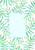 与水彩热带植物的卡片模板 免版税库存图片