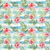 与水彩热带花和叶子的无缝的样式 免版税库存照片