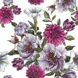 与水彩牡丹、曼陀罗花、大丽花和郁金香的花卉无缝的样式 库存图片