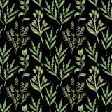 与水彩绿叶的无缝的样式在黑色 库存照片