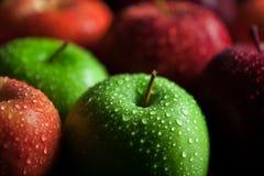 与水滴和暗影的苹果 库存图片