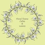 与水芋属和叶子的花卉框架 向量例证
