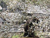 与水轮的老磨房 免版税库存照片