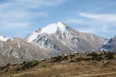 与永恒雪的一个巨大的山峰在一个绿色多山领域的背景 免版税库存照片