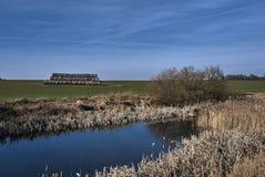 与池塘、培养的领域和秸杆大包的农村风景 库存图片