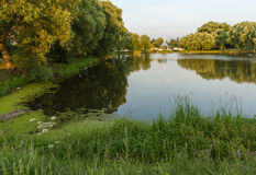 与池塘和桥梁的美丽如画的风景 库存照片