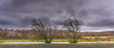与池塘和森林的秋天风景 库存图片