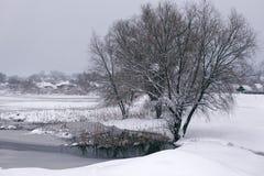 与池塘的冬天风景 免版税库存照片