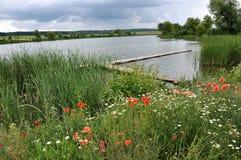 与池塘的夏天风景 图库摄影