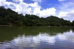 与池塘的横向 免版税图库摄影