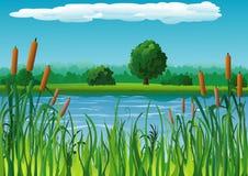 与池塘的横向 库存照片