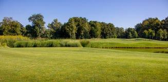 与池塘的美丽的绿色夏天反对清楚的蓝天的车道和树 春天和夏天公园风景 与湖的高尔夫球领域 免版税库存照片