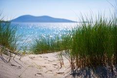 与沙丘、高草和蓝天的晴朗的海滩 免版税图库摄影