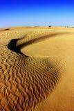 与沙丘的撒哈拉大沙漠风景 突尼斯 免版税图库摄影
