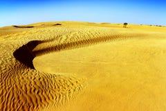 与沙丘的撒哈拉大沙漠风景 免版税库存照片