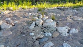 与沙子、石头和植物的背景 免版税库存照片