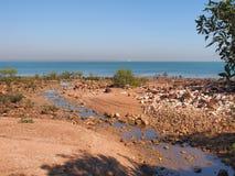 与沙子岩石、美洲红树和海洋的海滩东部点储备的 库存照片