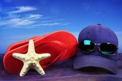与沙子的海壳作为背景,夏天旅行 免版税库存图片