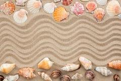 与沙子的海壳作为背景 免版税库存图片