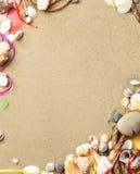 与沙子,作为背景的绳索的海壳 免版税库存照片