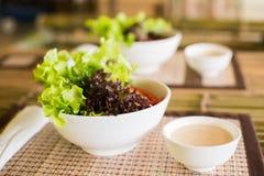 与沙拉奶油的新鲜蔬菜沙拉 免版税库存图片