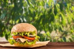 与沙拉成份的可口乳酪汉堡在一张土气木桌上的一个烤牛肉小馅饼与copyspace 库存照片