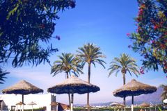 与沙滩伞和棕榈的海滩 葡萄酒过滤器 Ð ¡耳朵夏天天空 时尚,旅行,夏天, 免版税库存照片