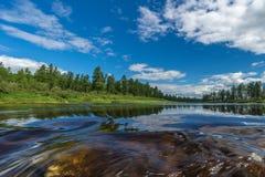 与河、多云天空、森林和太阳的夏天风景 免版税图库摄影
