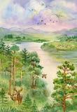 与河、杉木、树和鹿的夏天风景 库存照片