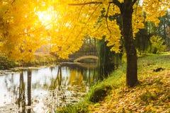 与河、桥梁和树的美好的秋天风景 图库摄影
