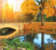 与河、桥梁和树的美好的秋天风景 免版税库存照片