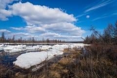 与河、森林、冰和云彩的春日风景在蓝天 免版税库存照片