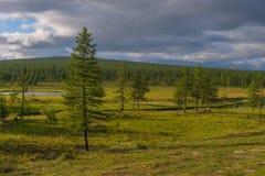 与河、森林、峭壁和云彩的夏天风景在蓝天 库存图片