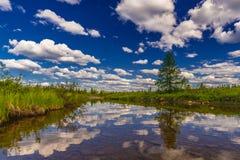 与河、森林、峭壁和波浪的夏天风景 库存图片